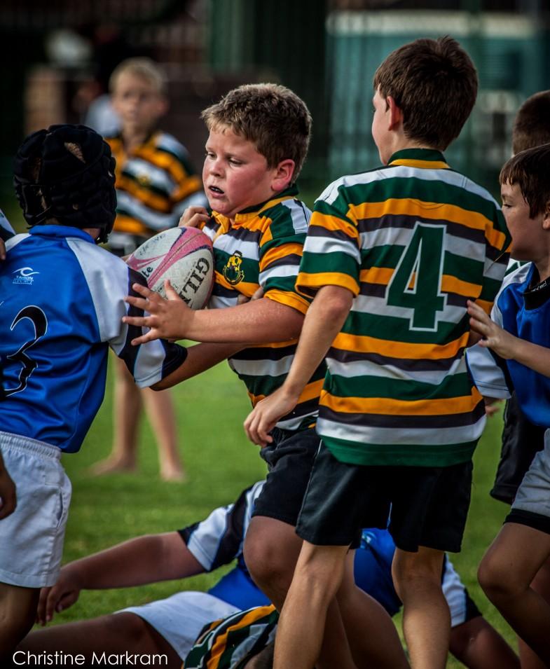 Rugby Wonderboom-7
