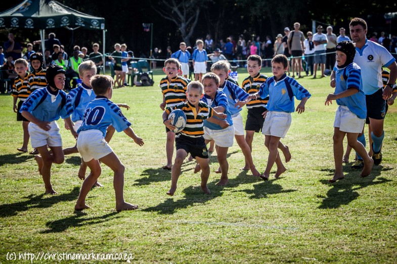 Rugby teen avw-14