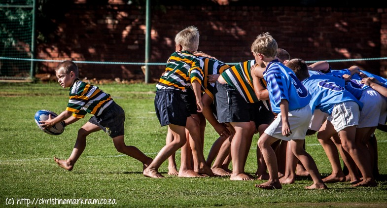 Rugby teen avw-7