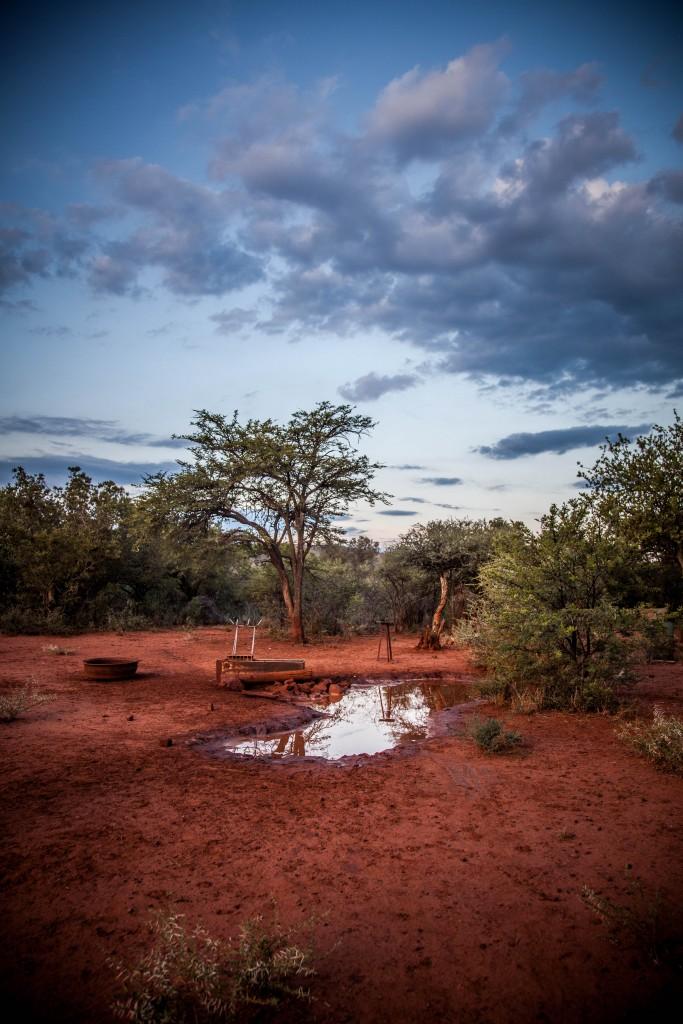 Kudu Gefahr Feb 2016-39