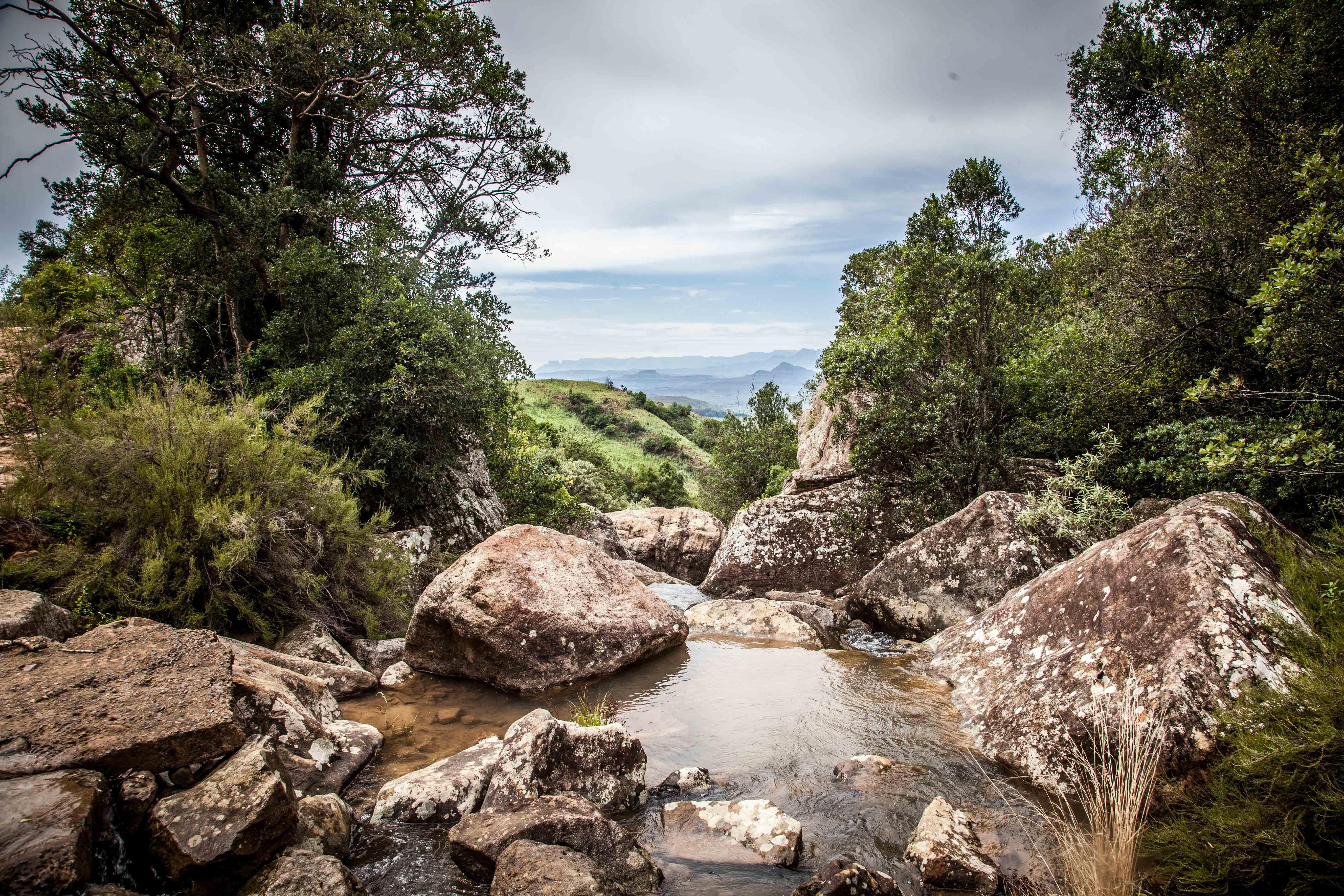Drakensberg | Ingwe Cabin