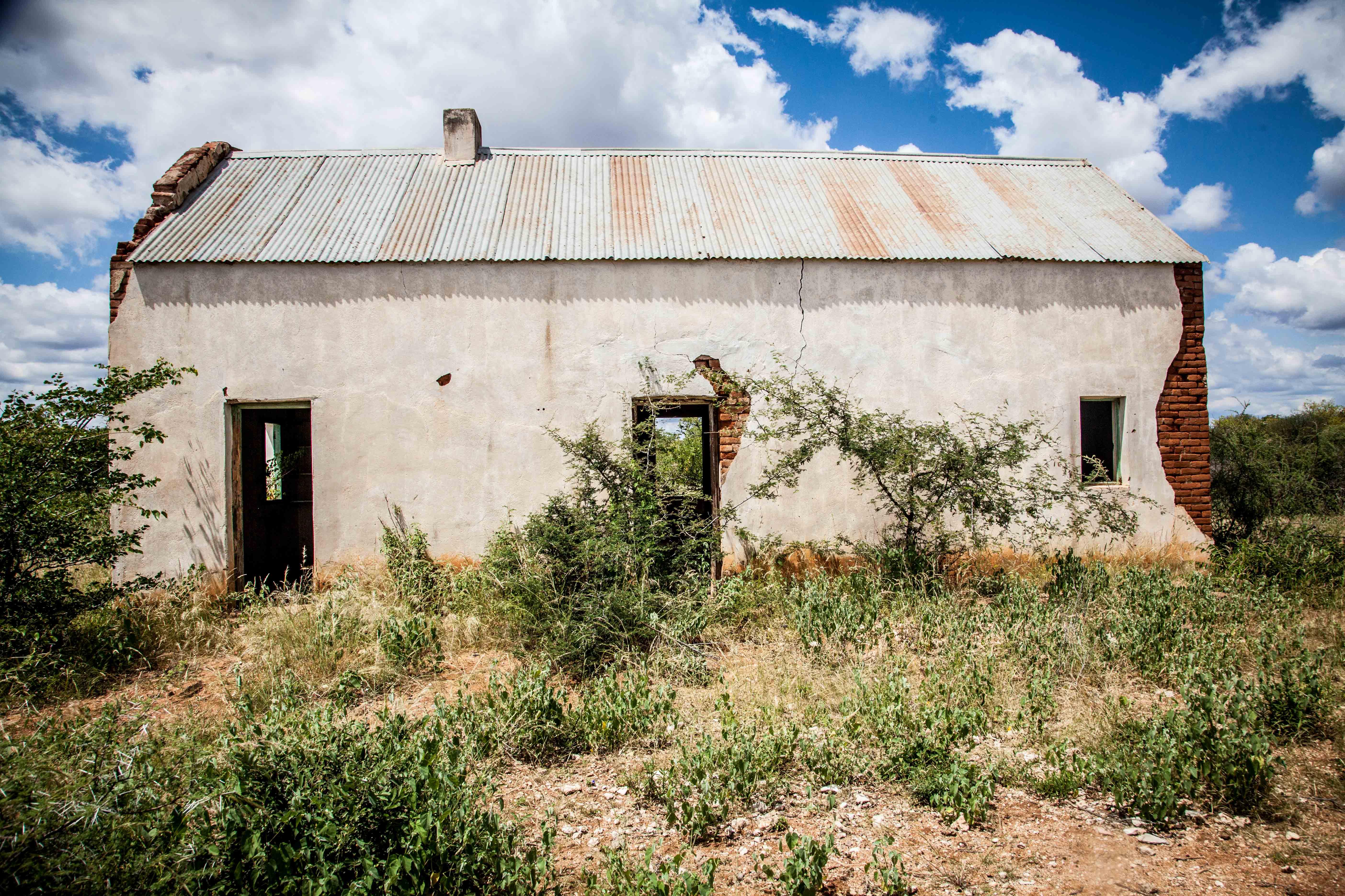 Mopanie | Wit Huis